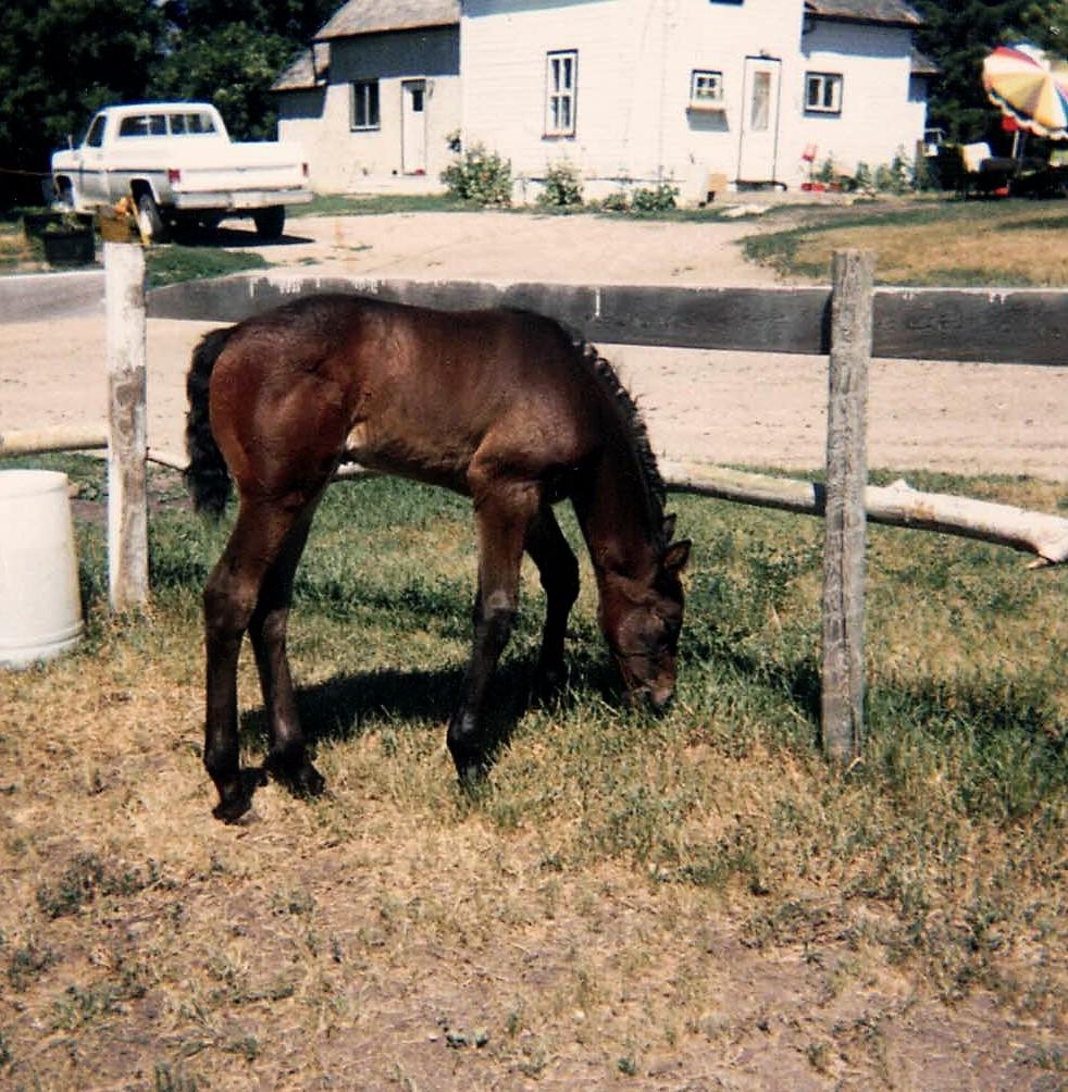Anja July 1987